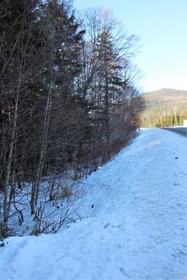 5 mile zimovia hwy,Wrangell,Alaska 99929,Land,5 mile zimovia hwy,1126