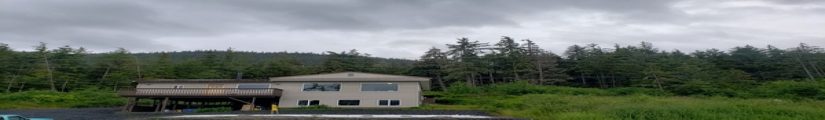 4 mile Zimovia Hwy, Wrangell, Alaska 99929, 3 Bedrooms Bedrooms, ,2 BathroomsBathrooms,Single Family Home,Homes,4 mile Zimovia Hwy,1131