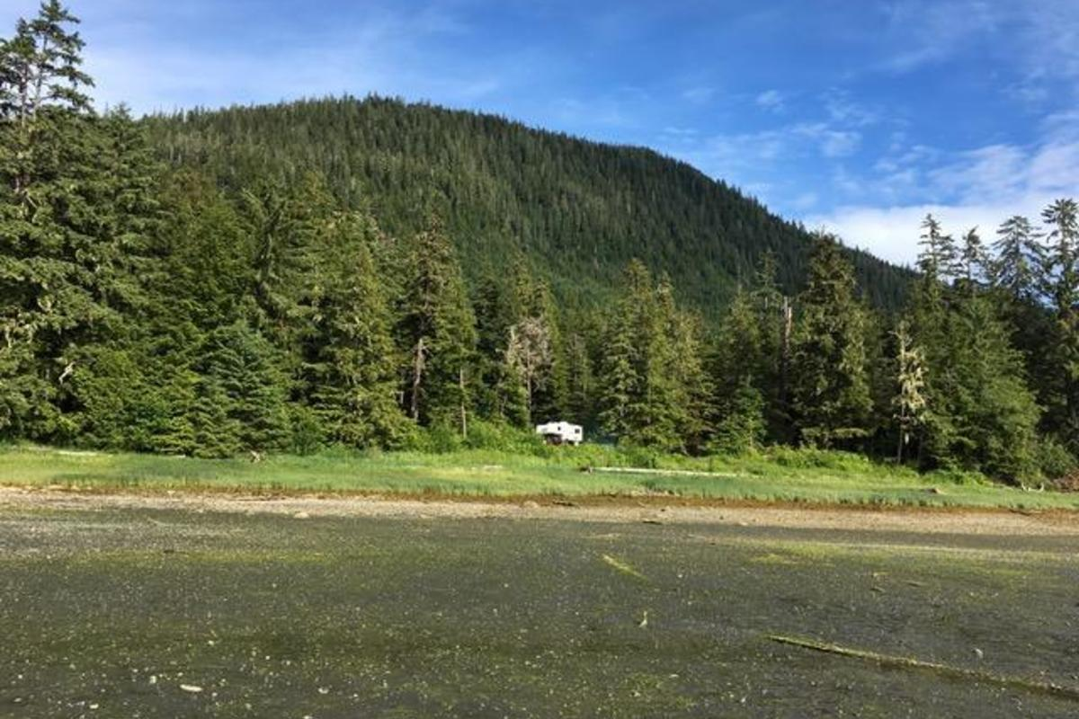 11 mile zimovia hwy,Wrangell,Alaska 99929,Land,1019