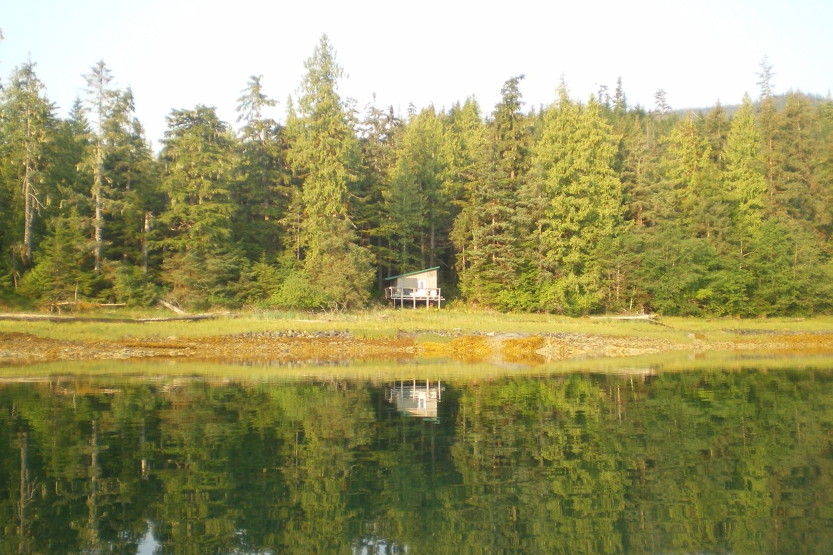 Olive Cove,wrangell,Alaska 99929,Land,Olive Cove,1021