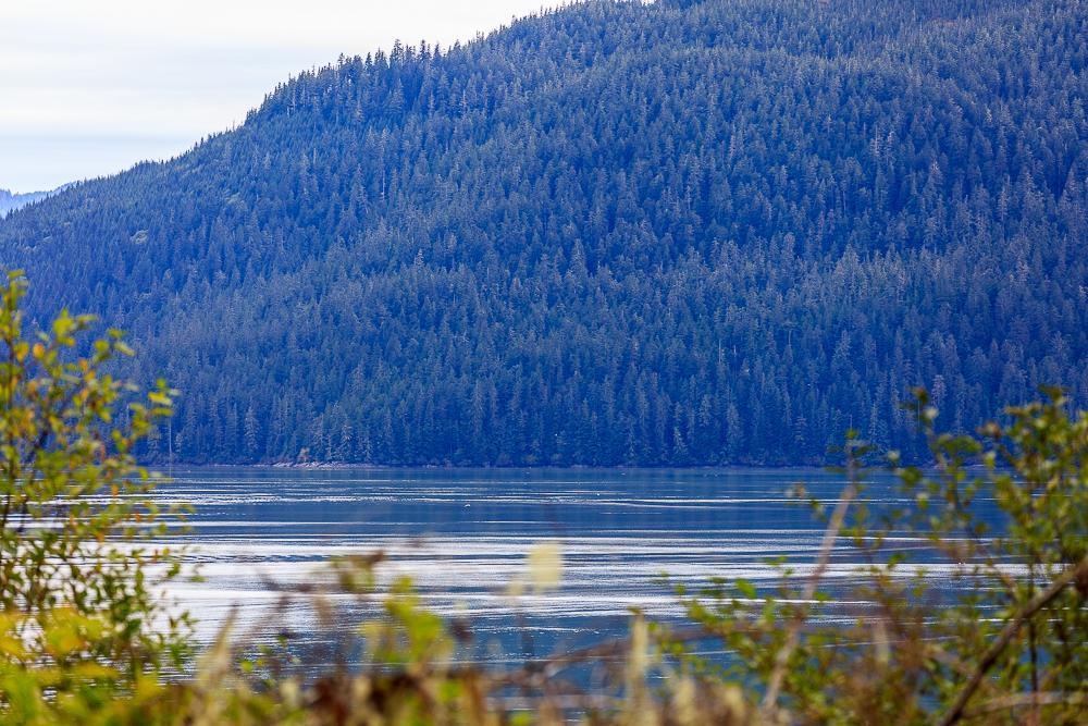 Phillips,Wrangell,Alaska 99929,Land,Phillips,1022